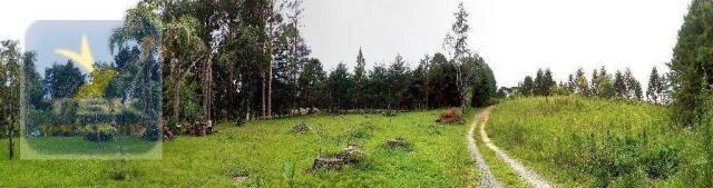 CH0223 - Chácara com 2 dormitórios à venda, 10935 m² por R$ 337.000 - Zona Rural - Agudos  - Foto 10