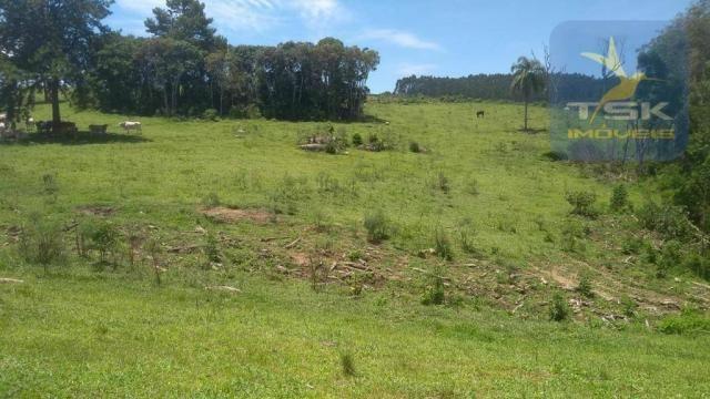 Fa0009 fazenda à venda, 605000 m² por r$ 3.150.000 - zona rural - quitandinha/pr - Foto 18