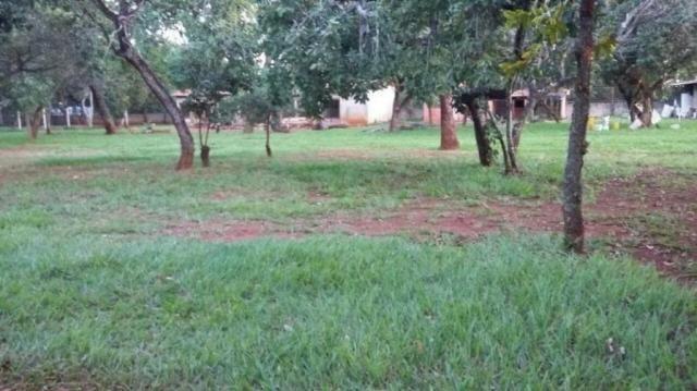 Chácara rural à venda, sítios de recreio mansões do campus, goiânia. - Foto 3