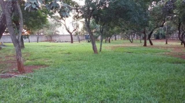 Chácara rural à venda, sítios de recreio mansões do campus, goiânia. - Foto 2