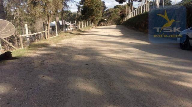 Chácara Rural/Comercial 1.500 m² Mandirituba frente estrada - Foto 3