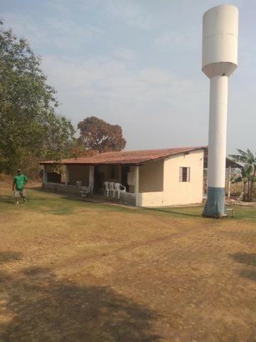 Vendo Sítio com 10 hectares à 23 Km de Cuiabá sentido Santo Antonio, - Foto 20