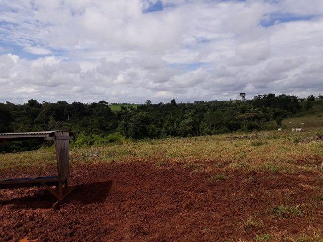 Terra roxa: arrendo para lavoura - Foto 12