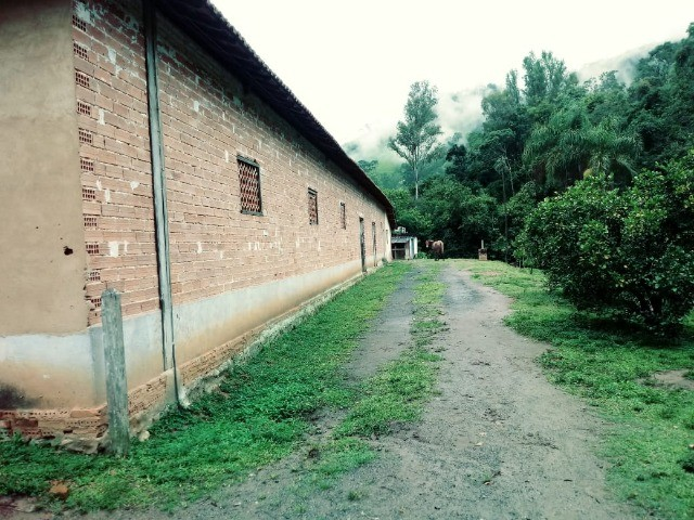 Chácara contendo casa e galpão em Delfim Moreira- Sul de Minas Gerais. - Foto 5