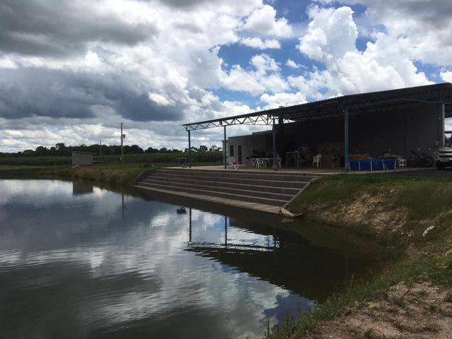 Chácara 40 km de Goiânia - Foto 6