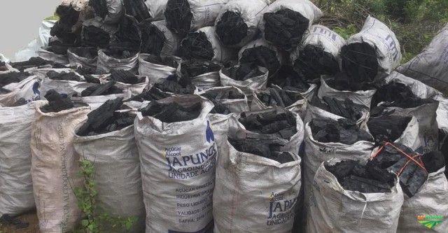 Carvão vegetal de ALGAROBA  contato direto fábrica  - Foto 4