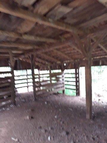 Chácara 25 hectares em Porto Lucena RS. - Foto 11