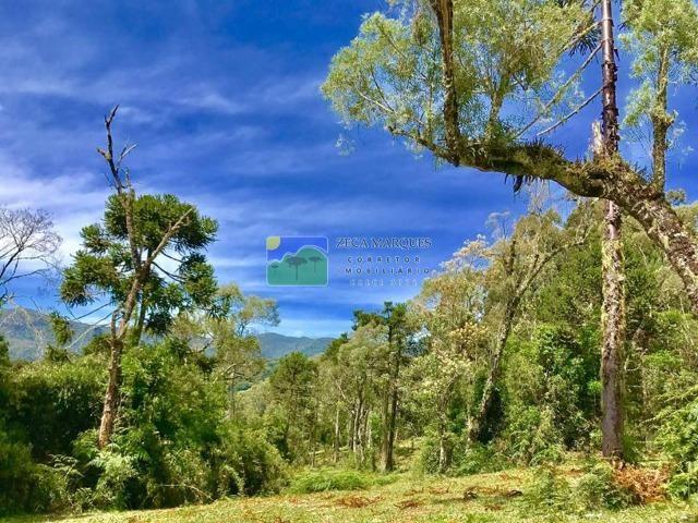 Terreno 2 hectares em Urubici - Foto 2
