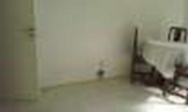 Apartamento 01 Quarto ,Pituba