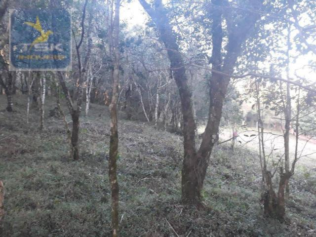 CH0300 - Chácara Agudos do Sul 12.100 m² 3 km da cidade - Foto 8
