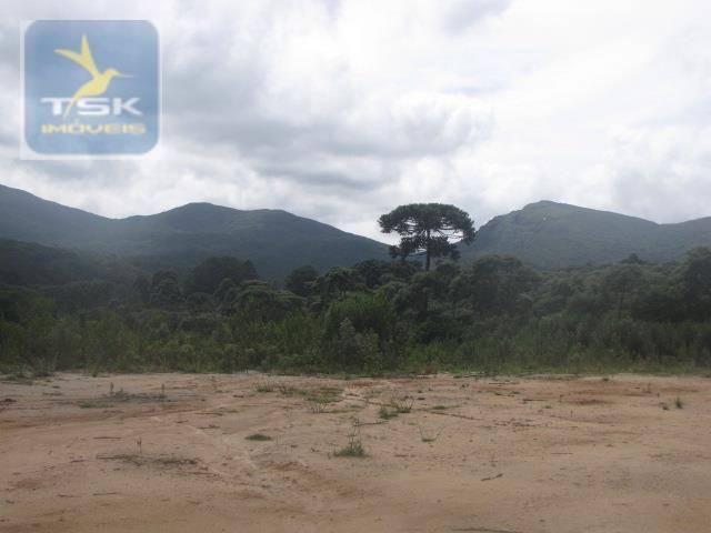 Piraquara chácara 64.471,25 m² planta deodoro infinitas possibilidades dentro da cidade ch - Foto 15