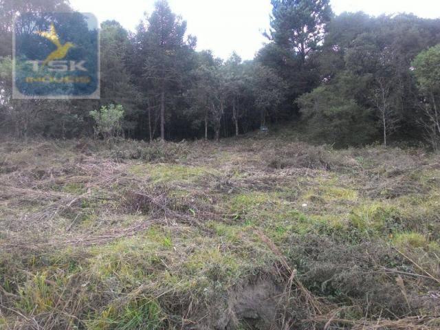 CH0300 - Chácara Agudos do Sul 12.100 m² 3 km da cidade