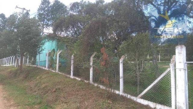 CH0329 - Quitandinha 5 Alq. Chácara 2 Km do asfalto 3,5 km da Cidade - Foto 4