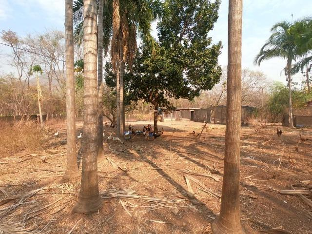 Vendo Sítio com 10 hectares à 23 Km de Cuiabá sentido Santo Antonio, - Foto 12