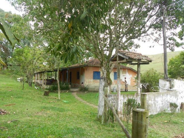 Jordão Corretores - Fazendinha leiteira 5 alqueires - Foto 6