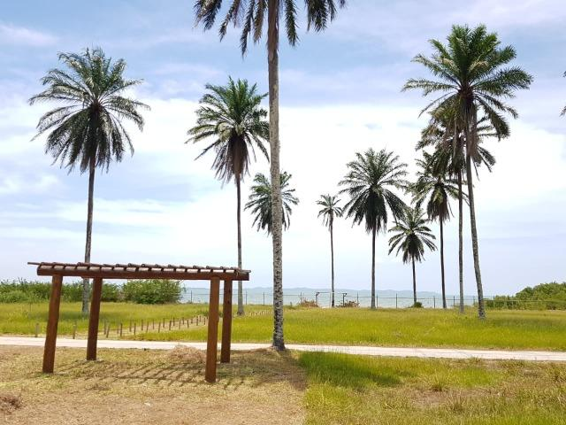 Casa de praia - Lotes em Santo Amaro Saubara. Entrada facilitada! - Foto 2