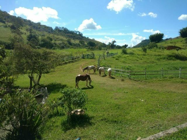 Excelente propriedade em Cantagalo!!! - Foto 12