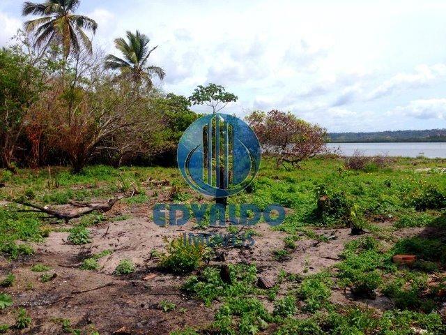 Lotes - Mal Deodoro - Beira de Lagoa - Foto 4