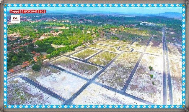 Lotes Terras Horizonte %%$% - Foto 15