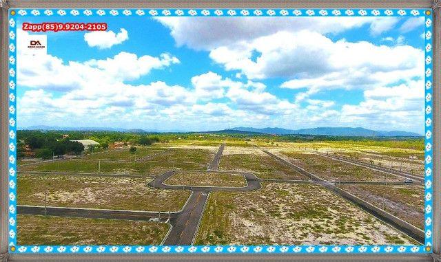Lotes Terras Horizonte %%$% - Foto 9