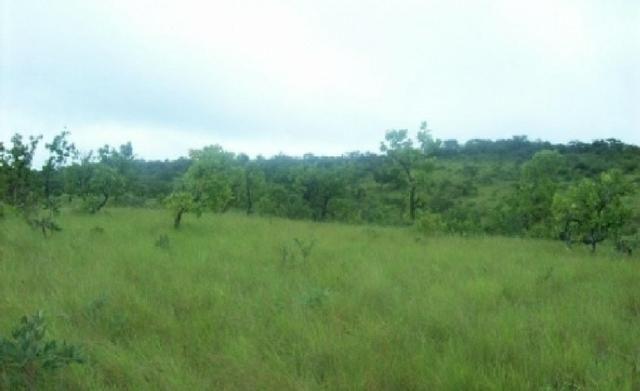 Venda de uma Fazenda- 25 alqueires (1.210,000 M²) - Arenópolis-GO - Foto 3