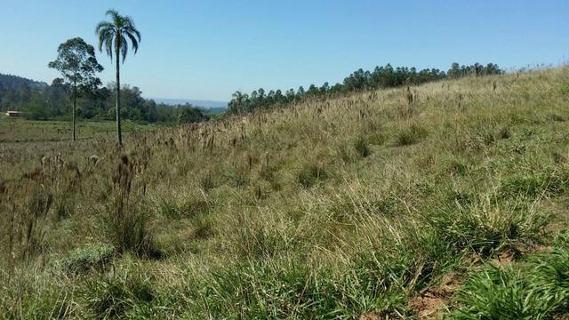 Condomínio de chácaras em Sapiranga - Vivendas do Campo - Foto 16