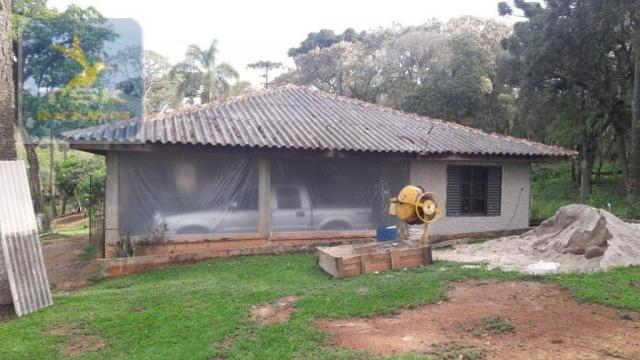 Ch0311 - mandirituba - chácara 10.000 m² com casa antes do pedágio - Foto 4
