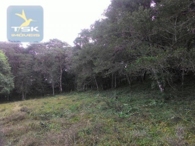 CH0300 - Chácara Agudos do Sul 12.100 m² 3 km da cidade - Foto 4