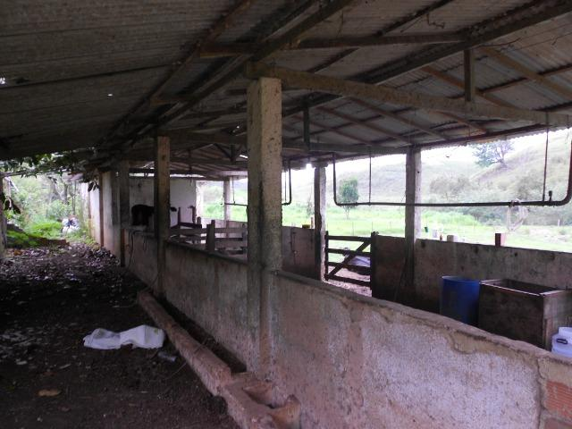 Jordão Corretores - Fazendinha leiteira 5 alqueires - Foto 8