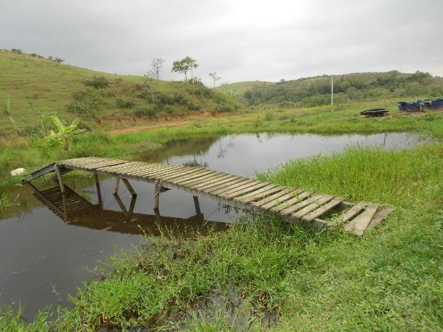 Jordão Corretores - Fazendinha leiteira 5 alqueires - Foto 7