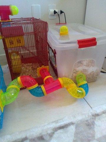Gaiolas para hamster  - Foto 3