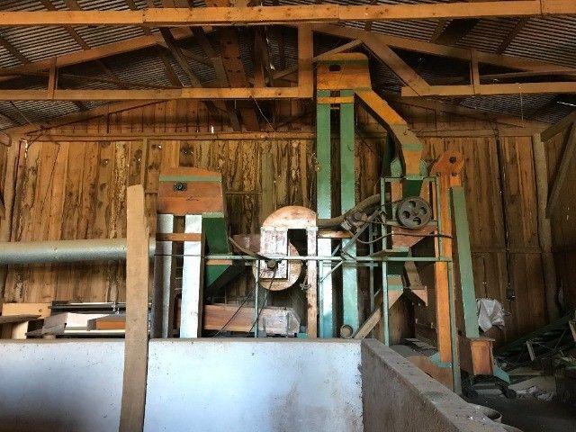 Maquina limpeza de cereais - feijão soja milho