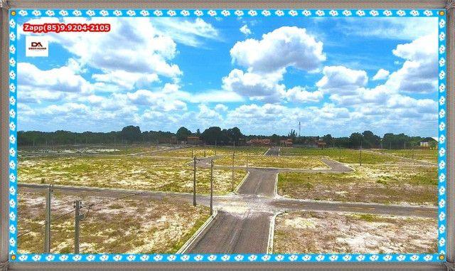 Lotes Terras Horizonte %%$% - Foto 5