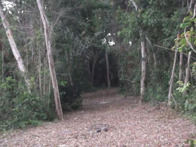 Terreno para Venda em Mata de São João, Acú da Torre - Foto 12