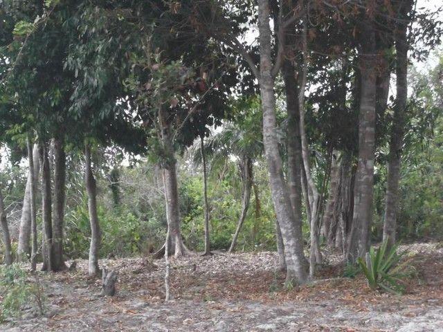 Terreno para Venda em Mata de São João, Acú da Torre - Foto 7