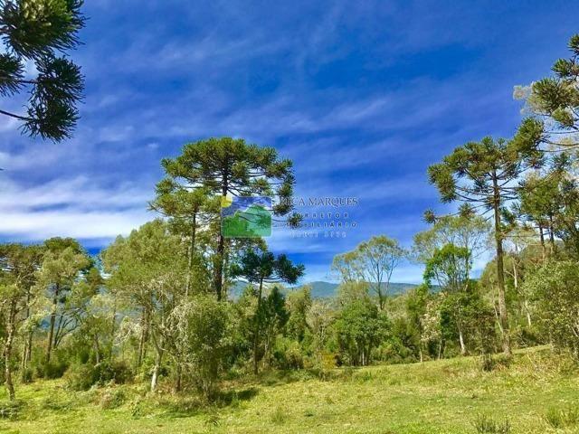 Terreno 2 hectares em Urubici - Foto 3