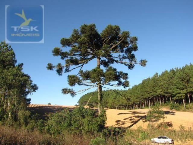 Ch0197 - área para formar chácara araucária - tietê 36.300 m² luz e água