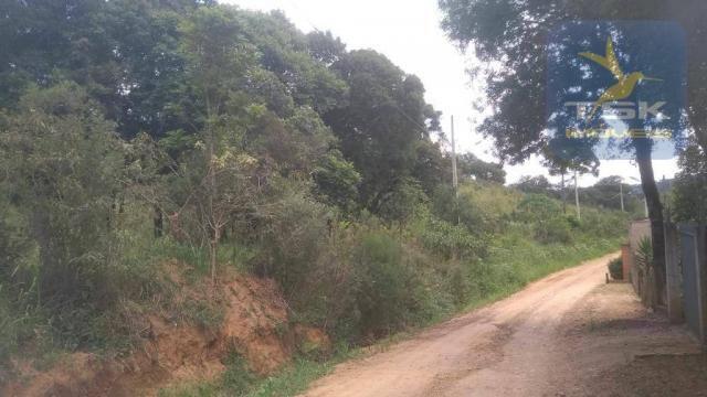 CH0329 - Quitandinha 5 Alq. Chácara 2 Km do asfalto 3,5 km da Cidade - Foto 13