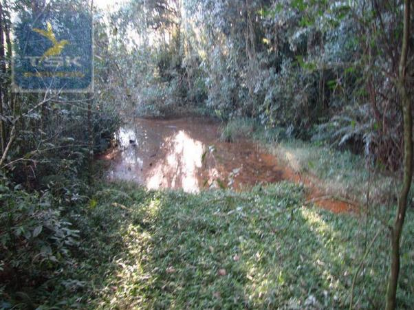 Ch0197 - área para formar chácara araucária - tietê 36.300 m² luz e água - Foto 6