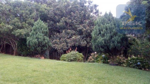 Excelente chácara com 26078 m² por r$ 385.000 - areia branca - mandirituba/pr - Foto 5