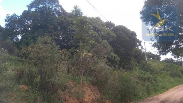 CH0329 - Quitandinha 5 Alq. Chácara 2 Km do asfalto 3,5 km da Cidade - Foto 14