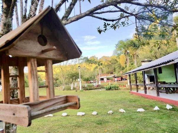 Ch0291 mandirituba (porteira fechada) chácara 14.500,00 m² - Foto 2
