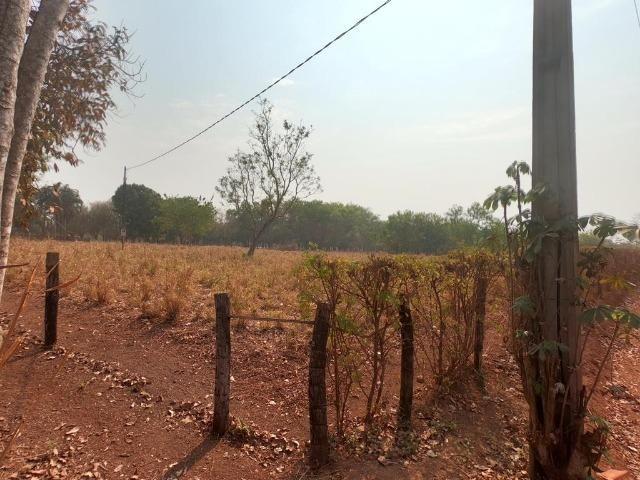 Vendo Sítio com 10 hectares à 23 Km de Cuiabá sentido Santo Antonio, - Foto 14