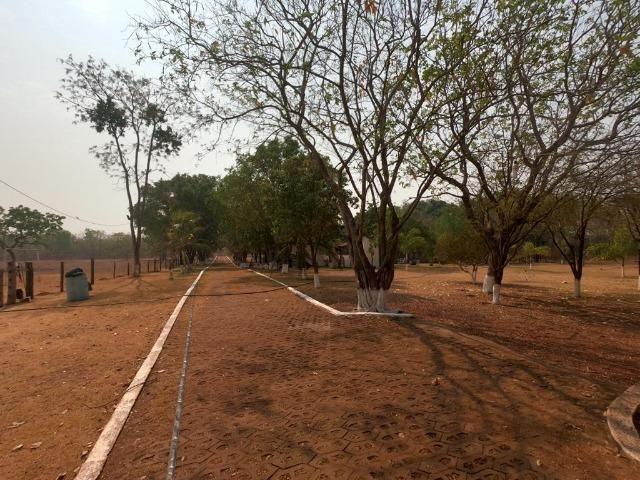 Vendo Sítio com 10 hectares à 23 Km de Cuiabá sentido Santo Antonio, - Foto 19