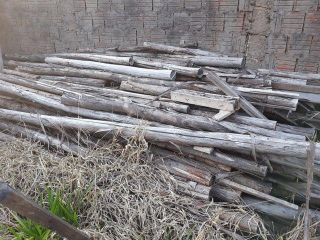 Escoras de eucalipto pra obra