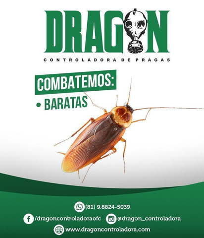 Barata, formigas e escorpião 100,00
