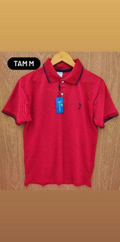 Camisas Gola polo Promoção R$ 45,00