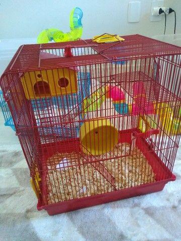 Gaiolas para hamster  - Foto 5