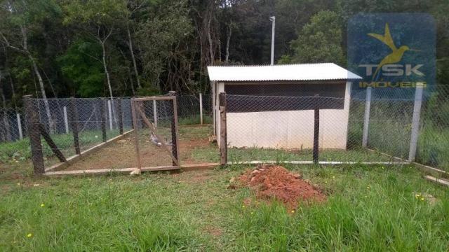 CH0315 - São José dos Pinhais Chácara 20.000 m² casa nova, internet fibra ótica. - Foto 12