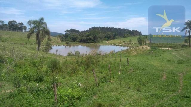 Fa0009 fazenda à venda, 605000 m² por r$ 3.150.000 - zona rural - quitandinha/pr - Foto 6